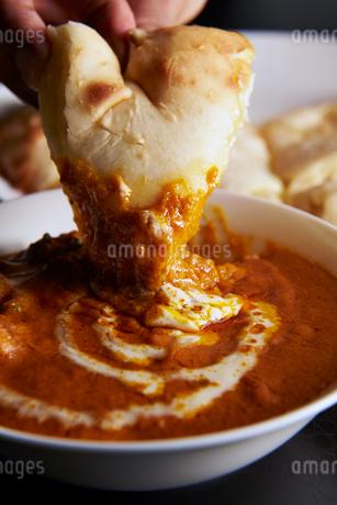 インドカレーとチーズナンの写真素材 [FYI01755893]