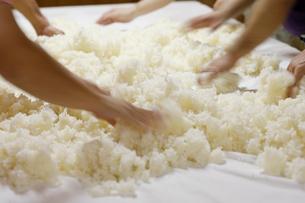 日本酒作りの麹を混ぜる工程写真の写真素材 [FYI01755933]