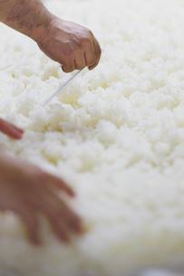 日本酒作りの麹を混ぜる工程写真の写真素材 [FYI01756022]