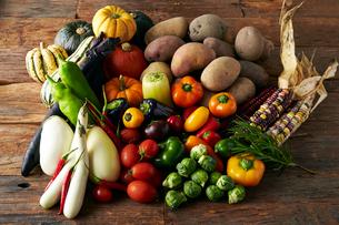 変わり野菜の集合の写真素材 [FYI01756043]