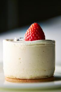 クリームチーズケーキの写真素材 [FYI01756157]