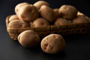 ジャガイモの写真素材 [FYI01756195]