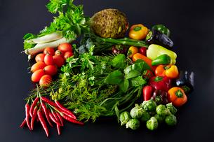 芽キャベツ,ミニパプリカ、フルーツパプリカ,白ナス,ハーブなど野菜の集合の写真素材 [FYI01756887]