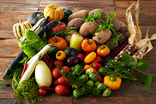 変わり野菜の集合の写真素材 [FYI01756969]