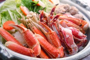タラバとズワイ蟹の鍋イメージ写真の写真素材 [FYI01757013]