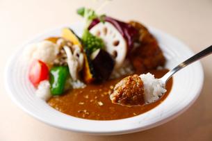 野菜カレーの一口イメージ写真の写真素材 [FYI01757772]