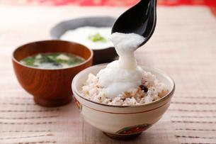 五穀米と長いものイメージの写真素材 [FYI01758107]