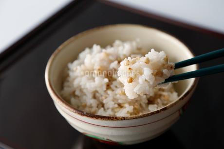 蕎麦の実ご飯の写真素材 [FYI01758422]