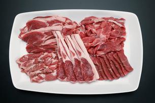 ラム肉の写真素材 [FYI01758840]