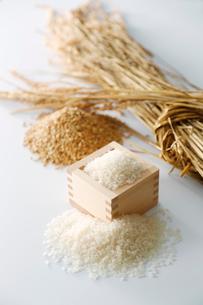 お米と稲喪のイメージの縦の写真の写真素材 [FYI01758885]