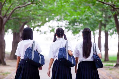 並んで歩く中学生の写真素材 [FYI01759159]