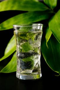 熊笹茶の写真素材 [FYI01759327]