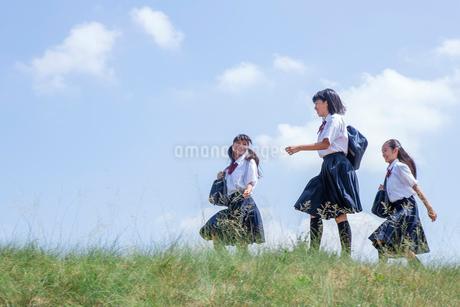 並んで歩く中学生の写真素材 [FYI01759486]