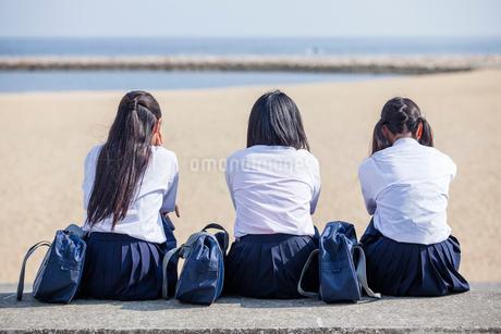 並んで座る中学生の写真素材 [FYI01759496]