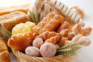 パンの集合写真の写真素材 [FYI01759607]