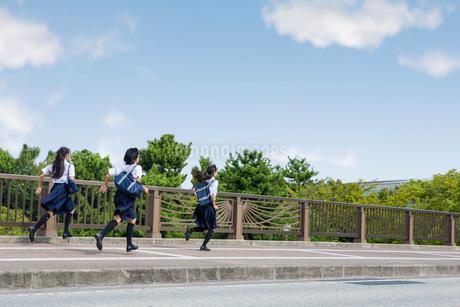橋の上を走る中学生の写真素材 [FYI01759615]