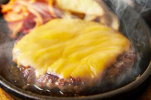 チーズハンバーグの写真素材 [FYI01759644]