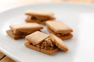 バターサンドクッキーの写真素材 [FYI01759685]