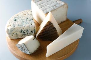 ヤギのチーズの写真素材 [FYI01759801]