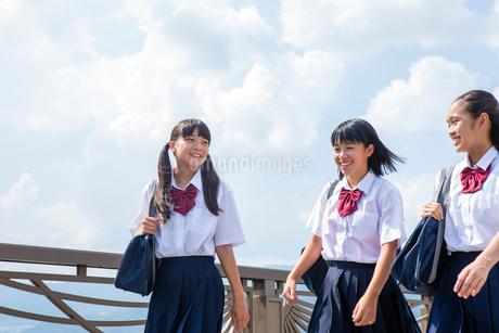 並んで歩く中学生の写真素材 [FYI01759831]