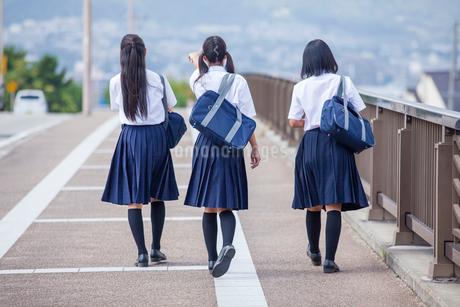 並んで歩く中学生の写真素材 [FYI01759984]