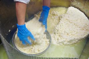 チーズを作る工程写真の写真素材 [FYI01760060]