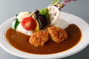 コロッケと野菜のカレーライスの写真素材 [FYI01760549]