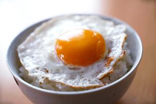 目玉焼きのせご飯の写真素材 [FYI01760839]
