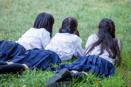 原っぱにうつぶせで頬杖をつく中学生の写真素材 [FYI01761095]