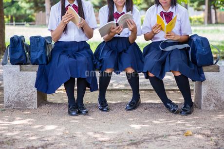 ベンチで勉強する中学生の写真素材 [FYI01761115]
