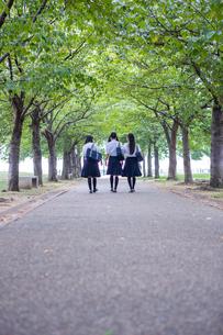 並んで歩く中学生の写真素材 [FYI01761125]