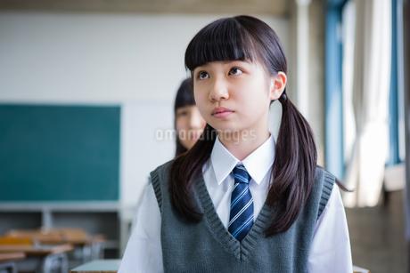 授業を受ける女子中学生の写真素材 [FYI01761131]