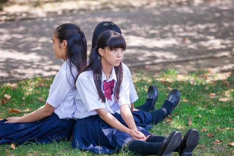 原っぱに背中合わせで座る中学生の写真素材 [FYI01761269]