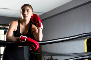 ジムでトレーニングをする女性の写真素材 [FYI01761480]
