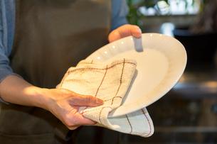 カウンターで皿を拭く女性の写真素材 [FYI01761497]