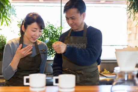 コーヒ豆の香りを嗅ぐ女性の写真素材 [FYI01761515]