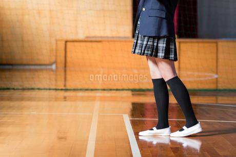 体育館の女子中学生の写真素材 [FYI01761531]