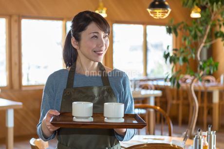 トレーを持って立つ女性店員の写真素材 [FYI01761611]