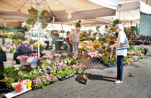 カンポ・デ・フィオーリ市場の花屋の写真素材 [FYI01762557]
