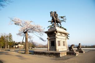 伊達政宗騎馬像と桜の写真素材 [FYI01762811]