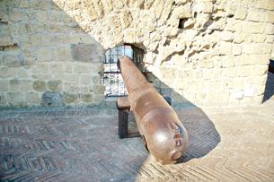 卵城の大砲の写真素材 [FYI01763070]