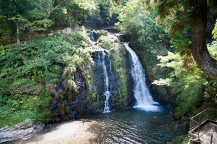 白銀の滝の写真素材 [FYI01763160]