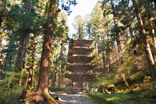 秋の羽黒山五重塔の写真素材 [FYI01763238]
