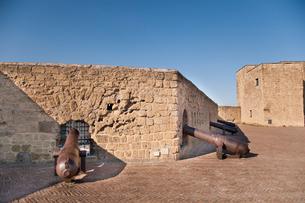 卵城の大砲の写真素材 [FYI01763502]