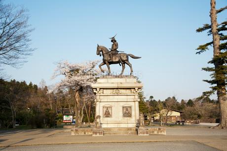 伊達政宗騎馬像と桜の写真素材 [FYI01763596]