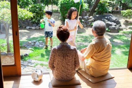 虫取りをする姉弟と祖父母の写真素材 [FYI01764610]