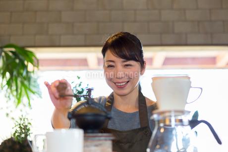 コーヒー豆を挽く女性の写真素材 [FYI01764750]