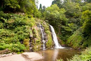 銀山温泉白銀の滝の写真素材 [FYI01765056]