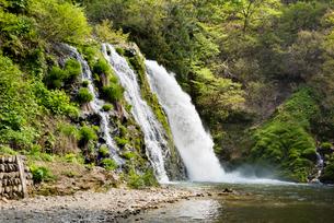 白銀の滝の写真素材 [FYI01765562]