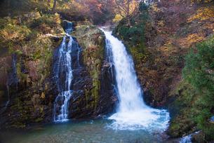 白銀の滝の写真素材 [FYI01765572]